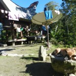 House yard and rice barn